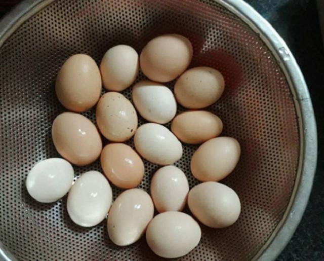 Anh Toàn nuôi vài con gà đẻ cung cấp trứng sạch cho bữa ăn hàng ngày.